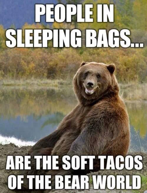 Bears Are in Tents... I Mean Intense & fail.me
